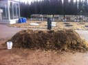 The test heap with foundry sand treatments in the holes